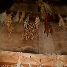 Rectory Kitchen, dried herbs, Ste. Marie Among the Iroquois by linmarie