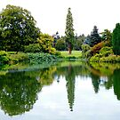 Lake Reflection by JenThompson85