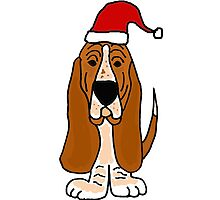 Adorable Basset Hound Dog with Red Santa Hat by naturesfancy