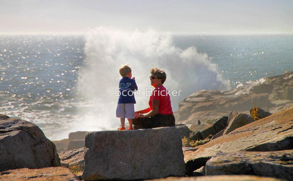 'The Value of Sharing Wonder' by Scott Bricker