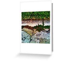 Tundra Greeting Card