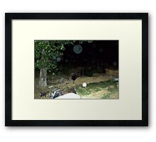 Orb Reporting Photograph #14 Framed Print