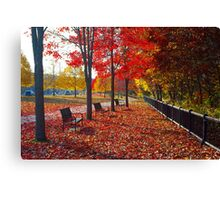 Autumn in Brooklyn,  Connecticut Canvas Print