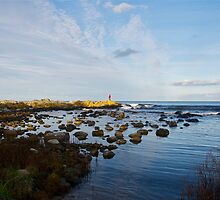 Scenes of Sweden: Photography by Vide Geiger and Laura Geiger by Laura Geiger