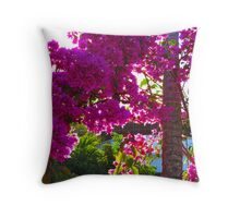 Bougainvilleas in the bright tropical sun Throw Pillow