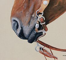 Horse Tack by Karl Connolly