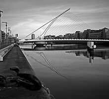 Samuel Beckett bridge by Esther  Moliné
