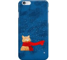 Tabby loves Snow iPhone Case/Skin