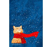 Tabby loves Snow Photographic Print