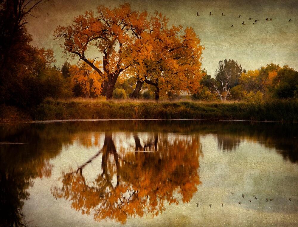 Autumn Resignation by vividpeach