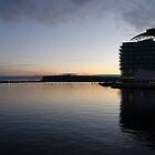 Cardiff Bay at Dusk by cofiant