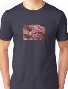 New Mexico Red Rocks Unisex T-Shirt