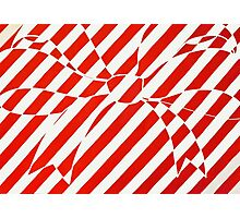 White and Red bow Photographic Print
