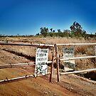 Australian outback, station gate. by Lynne Haselden