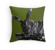 longhorned beetle's face Throw Pillow