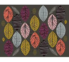 Nature Leaves by Seasons Photographic Print