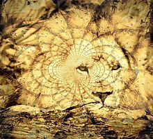 Lion Illusion by Melania