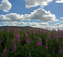 Wharfedale Sky by Kat Simmons