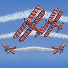 10 Ship Wingwalkers ! by Colin  Williams Photography