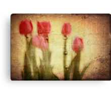 Spring Notes  Canvas Print