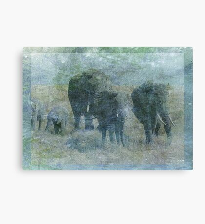 Chalk Elephants Canvas Print