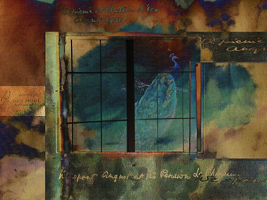 Through a Glass Darkly by Sarah Vernon