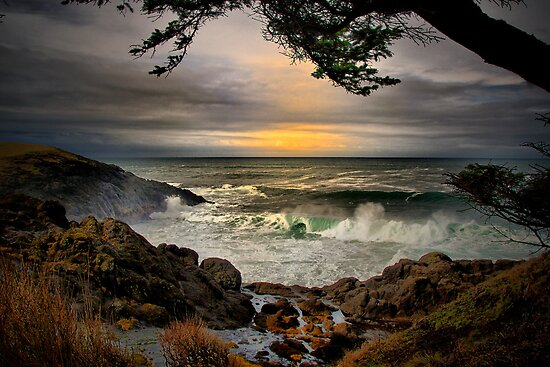 Little Whale Cove ~ Oregon Coast ~ by Charles & Patricia   Harkins ~ Picture Oregon