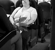 Lady Passenger in a Train... by Rene Fuller