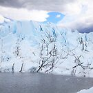 Matanuska Glacier by Gary L   Suddath