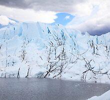 Matanuska Glacier by Gary L   Suddath