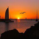 Twilight Sailing by Jill Fisher