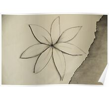 White flower on torn paper Poster