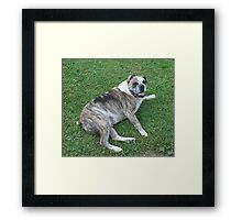 Yes I Can Curl My Tongue! Framed Print