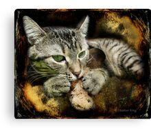 Clutch Canvas Print