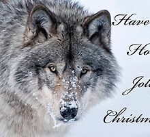Christmas Card - Timber Wolf by Michael Cummings