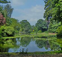 Reaseheath College Grounds  by AnnDixon