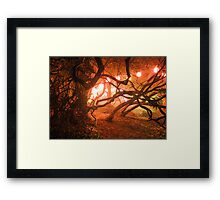 Bedgebury - Enchanted Forest Framed Print