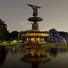 Bethesda Fountain, Central Park by briceNYC