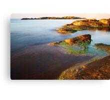 sunrise on the beauty wild coast Canvas Print