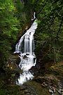 Moss Glen Falls, Stowe - An Overview by Stephen Beattie