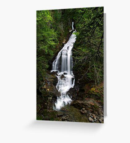 Moss Glen Falls, Stowe - An Overview Greeting Card