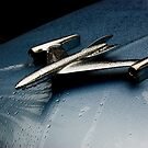 Rain Delay by Timothy Meissen