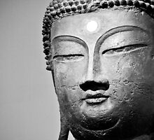 buddha stare  by Jennifer Kerr