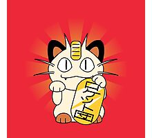 Payday Cat Photographic Print