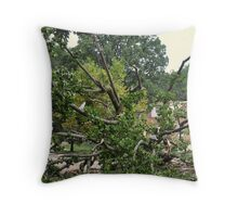 Hurricane Irene - The Aftermath - Plate No. # 3 Throw Pillow