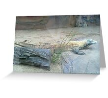 The Komodo Dragon Greeting Card