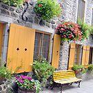 Rue de Petit Champlain by Shubd