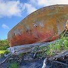 Lifeboat  by Bob Hortman