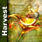 Harvest Calendar by StacyLee
