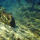 Underwater by jojojem